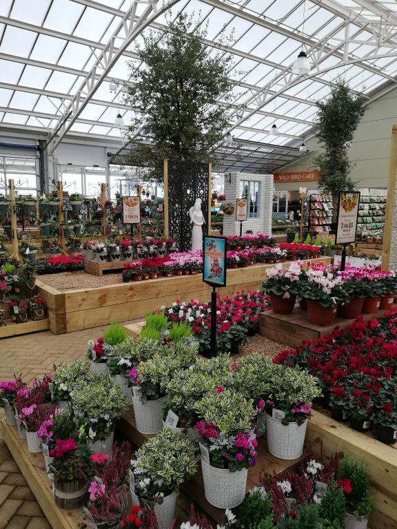 Gardenforum Headlines Garden Centres To Stay Open During 2nd English Lockdown